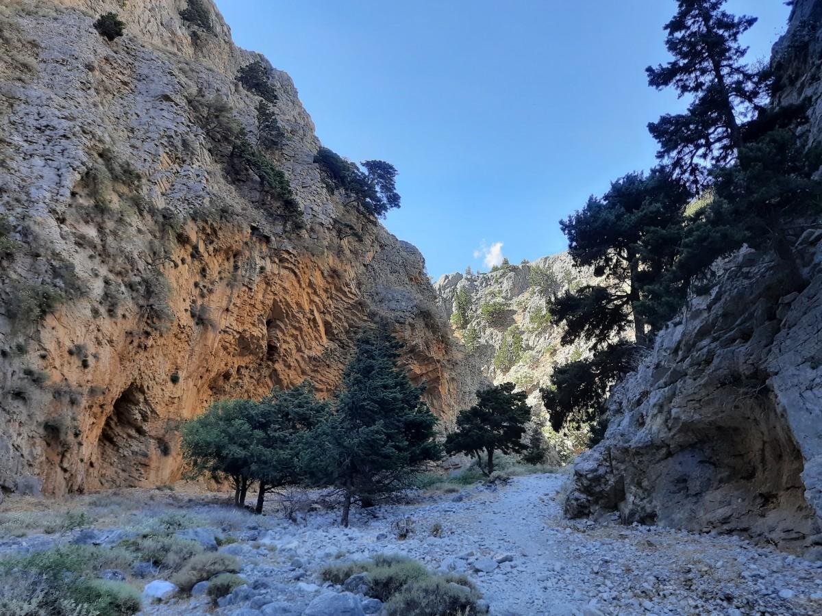 Zdjęcia: Imbros, Południowa Kreta , Wąwóz Imbros Knossos, GRECJA