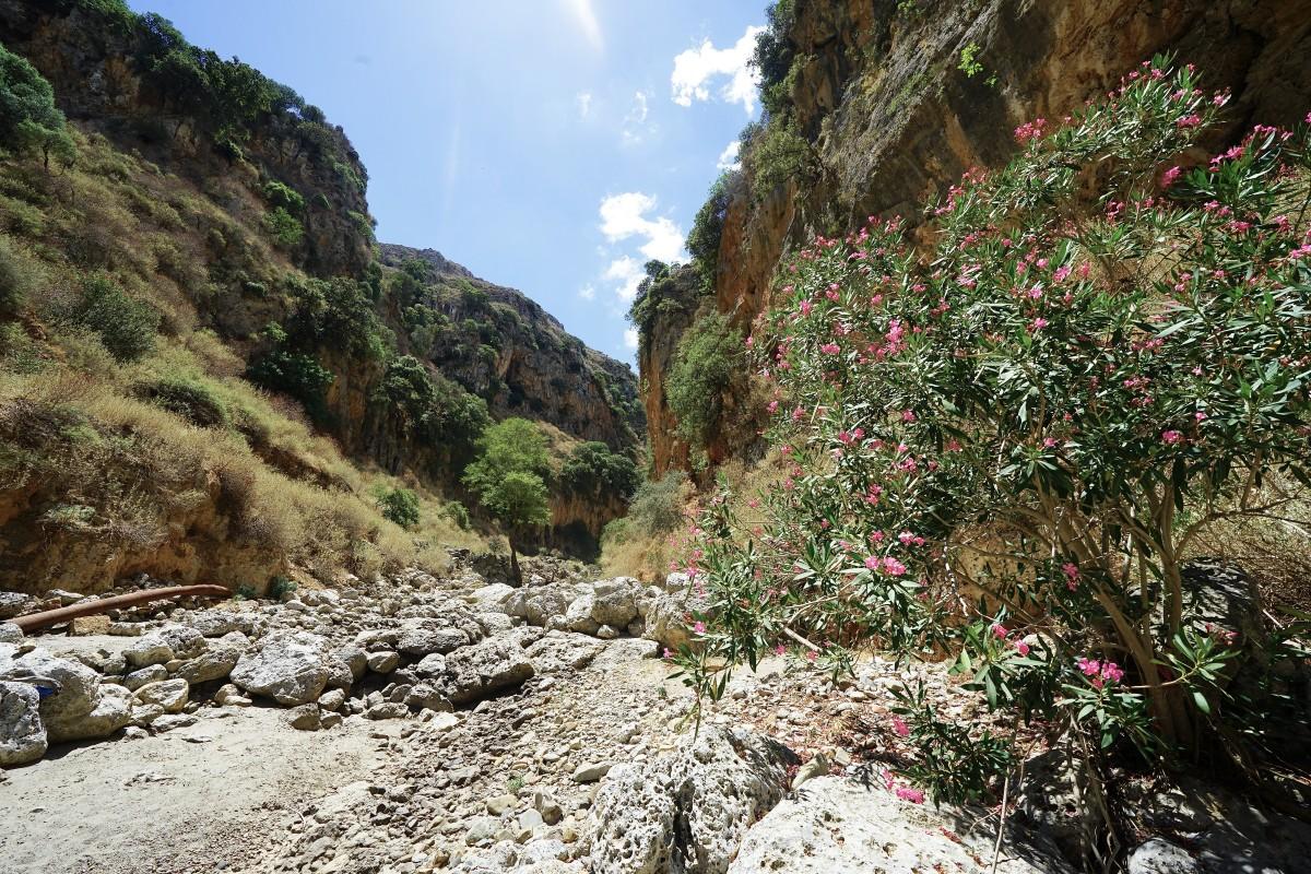 Zdjęcia: Topolia, Kreta, Wąwóz Topoliana, GRECJA