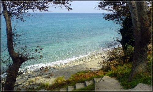 Zdjecie GRECJA / Tesalia / beach / Koutsoupia