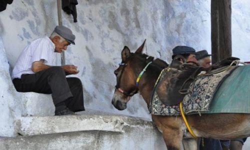 Zdjęcie GRECJA / SANTORINI / Fira / oczekiwanie na klienta