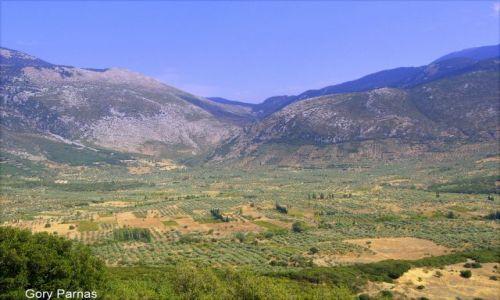 Zdjęcie GRECJA / Peloponez / Parnas / Parnas