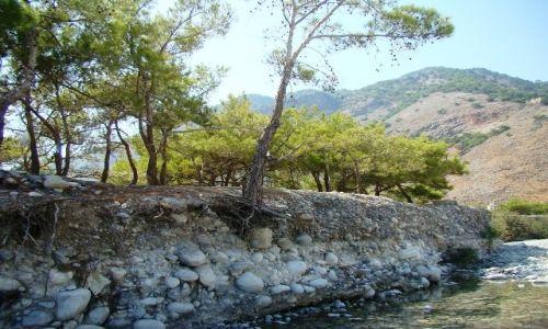 Zdjęcie GRECJA / - / Kreta  / Koryto górskiej rzeki