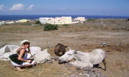 Zdjecie GRECJA / Cyklady / Santorini / Jak w Bajce