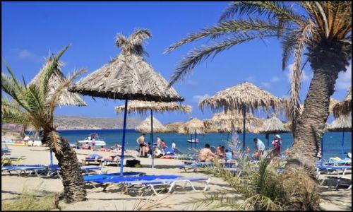 Zdjecie GRECJA / Kreta wschodnia / vai / plaża vai