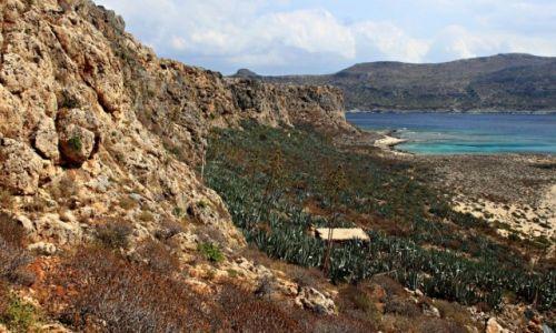 Zdjecie GRECJA / Kreta Zach. / Wyspa Gramvousa. / Skały,cyklady,agawy !