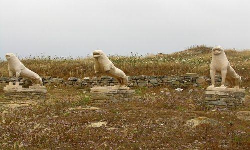 GRECJA / Cyklady / Delos / taras lwów