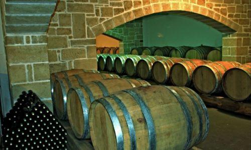 Zdjecie GRECJA / Kreta Zach. / Plokamiana / Leżakowanie miejscowego wina .