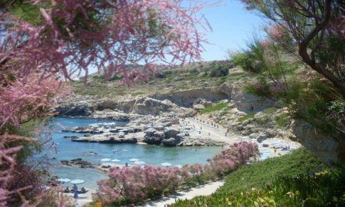 Zdjecie GRECJA / Rodos / Kalithea Mare Palace / Cudna plaża