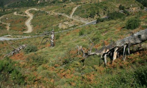 Zdjęcie GRECJA / Messenia / Góry Tajget / W drodze z Kalamty do Sparty przez Tajget