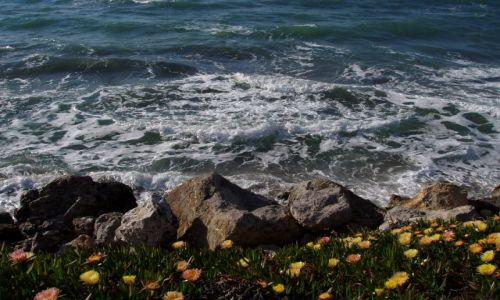 Zdjecie GRECJA / Wyspa Kos / Kos i okolice / blekit morza