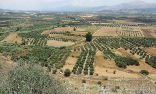 Zdjęcie GRECJA / Kreta / Fajstos / kreteńskie pejzaże