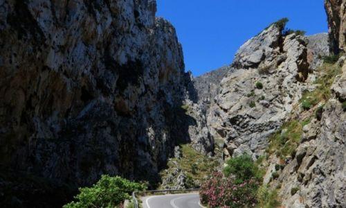 Zdjęcie GRECJA / Kreta / trasa Rethimnon - klasztor Preveli / wąwóz Kourtaliotiko