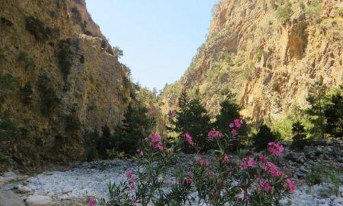 Zdjecie GRECJA / Kreta / Kreta Zachodnia / wąwóz Samaria