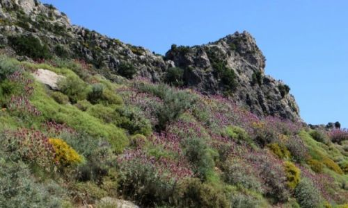 Zdjęcie GRECJA / Kreta / okolice wioski Azogires / wycieczka do groty Świętych Ojców