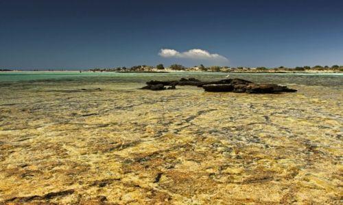 Zdjecie GRECJA / Kreta-Zach / Elafonisi / Plaża o  różowym piasku