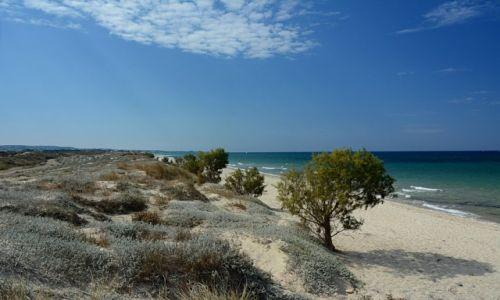 Zdjęcie GRECJA / Dodekanez / Marmari / Kos
