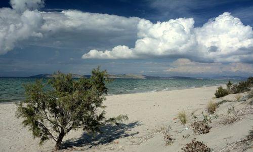 Zdjęcie GRECJA / Dodekanez / Tigaki / Kos