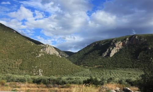 Zdjęcie GRECJA / Tesalia / Parnas / W drodze do Delf II