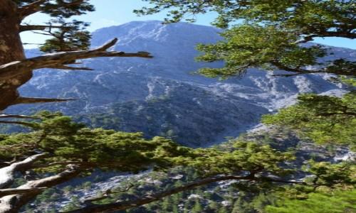 Zdjęcie GRECJA / Kreta / Wąwóz Samaria / wąsko...