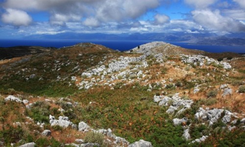 Zdjęcie GRECJA / Korfu / Pantokrator / Paprocie i kamienie