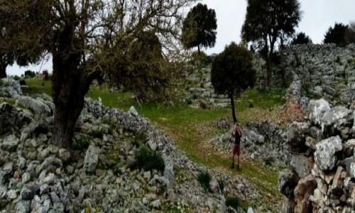 Zdjęcie GRECJA / Kreta / Sfakia-Lefka Ori / Pasterskie ścieżki u podnórza Gór Białych