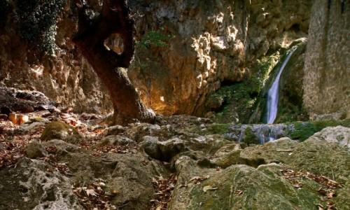 Zdjęcie GRECJA / Rodos / Dolina motyli / W dolinie motyli