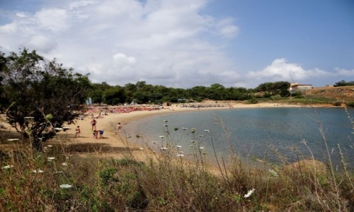 Zdjęcie GRECJA / Kreta / Kato Daratso, okolice Chanii / Lato, lato...
