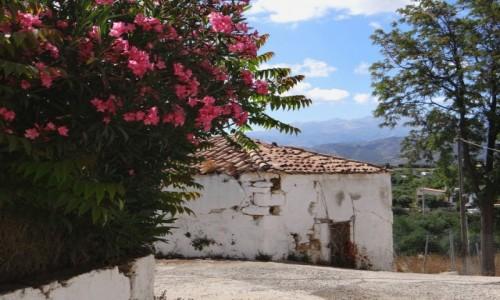 GRECJA / Kreta / Galatas / W małej wiosce na Krecie...