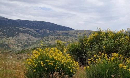 GRECJA / Kreta / w górach / Gdzieś w górach Krety.