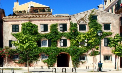 Zdjęcie GRECJA / Korfu / Okolice Starej Fortecy  / W zieleni