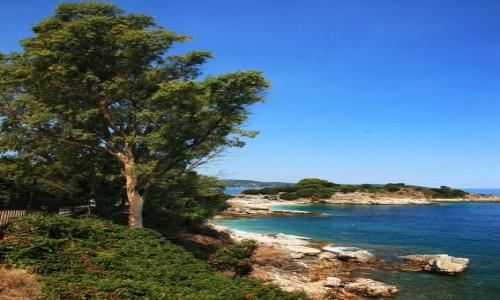 Zdjecie GRECJA / Korfu / Kassiopi / Plaża Kanoni