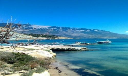 Zdjęcie GRECJA / Kefalonia / Spartia / Codzienne widoki