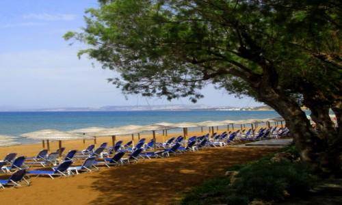 Zdjęcie GRECJA / Kreta / Agia Marina / Czekamy na turystów- strona prawa
