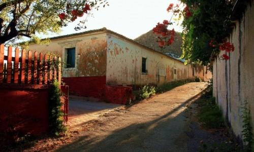 Zdjęcie GRECJA / Korfu / Peroulades  / Słoneczna uliczka
