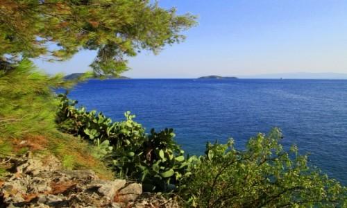 Zdjęcie GRECJA / Skiathos / okolice Skiathos City / Wyspa z widokiem na wyspy