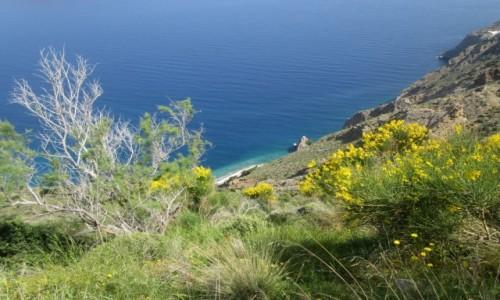 Zdjecie GRECJA / Kreta Wschodnia / okolice Agios Nikolaos / Żółto-niebiesko