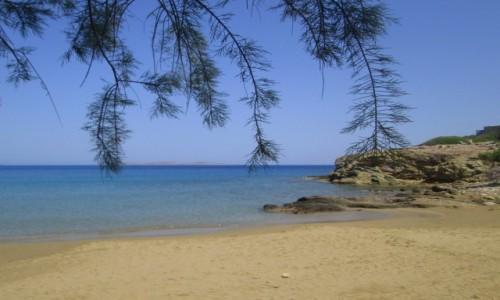 Zdjecie GRECJA / Kreta Wschodnia / Tenda Bay / Widok na morze spod