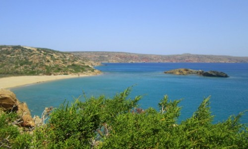 Zdjęcie GRECJA / Kreta Wschodnia / Vai / Vai Bay