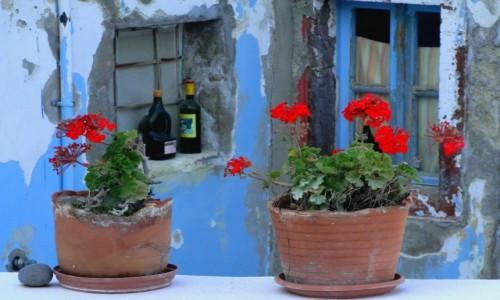 Zdjecie GRECJA / Santorini / Oia / Z serii: santoryńskie zakamarki.