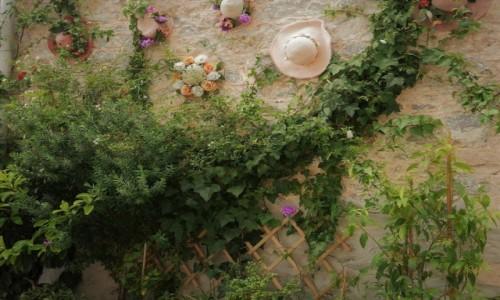 Zdjęcie GRECJA / Peloponez / Nafplion / Fasada domu