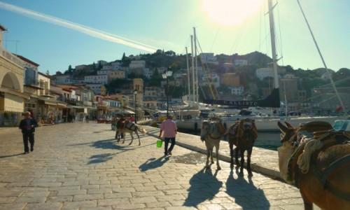 Zdjecie GRECJA / Morze Egejskie / Hydra / Taksówki na Hydrze
