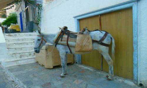 Zdjecie GRECJA / Morze Egejskie / Hydra / Zaparkowany pod garażem