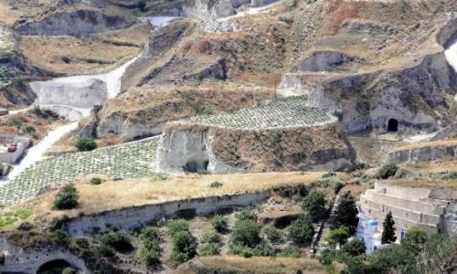 Zdjecie GRECJA / Cyklady / Santorini / Santoryńskie winnice.