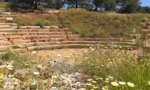 Zdjecie GRECJA / Kreta / Północna Kreta, okolice Chani / Na Krecie polecam tonące w kwiatach ruiny starozytnej APTERY