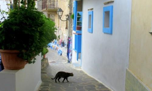Zdjecie GRECJA / Karpathos / Olympos / Leniwe popołudnie