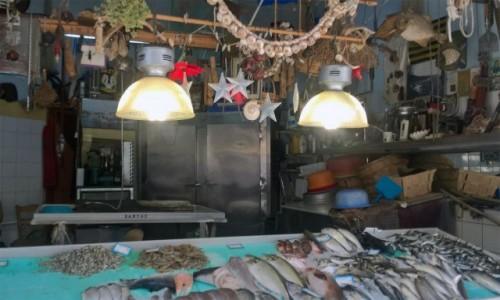 GRECJA / Lefkada / Lefkada / Klimatyczny sklep rybny