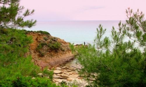 Zdjecie GRECJA / Thassos / okolice Limenarii / W drodze do Limenarii