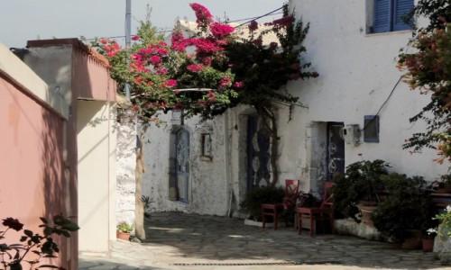 Zdjecie GRECJA / Wyspy Jońskie - Korfu / Afionas / Z wypadu na Korfu.