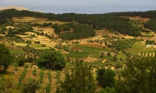 Zdjecie GRECJA / Archipelag Dodekanez / Rodos / krajobraz