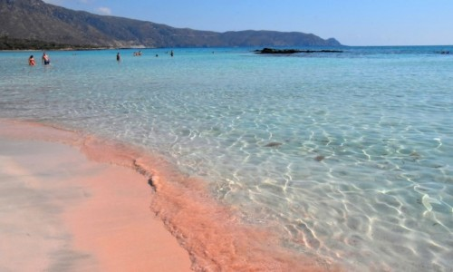 Zdjecie GRECJA / Kreta / Laguna Elafonisi / Plaża z różowym piaskiem